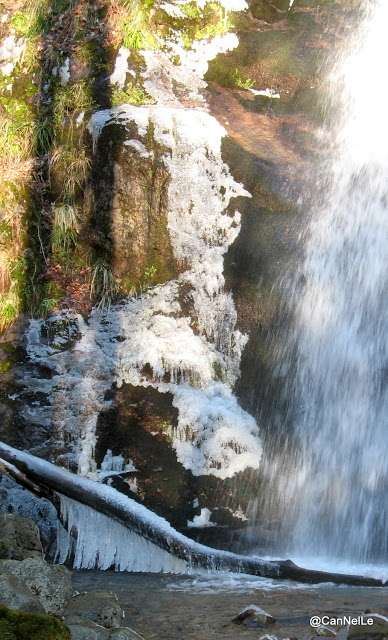 Cascade de Wildenstein
