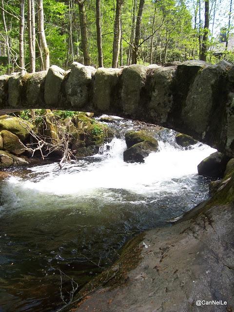 la Vologne et le petit pont de pierres