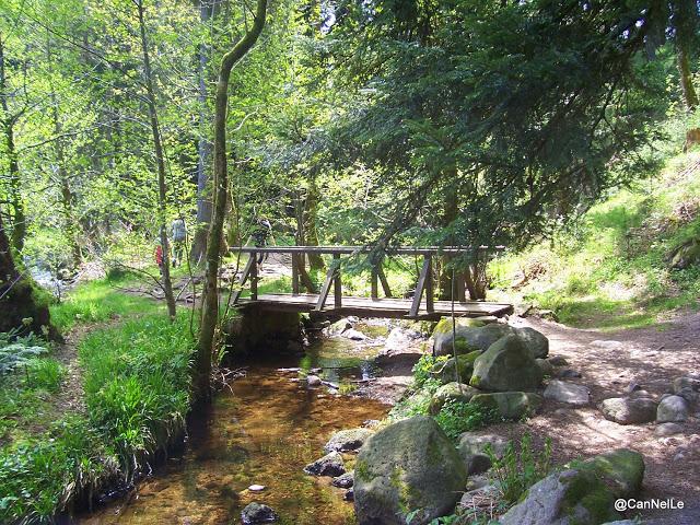 petit pont sur la Vologne au delà du petit pont de pierres en amont du Saut des Cuves