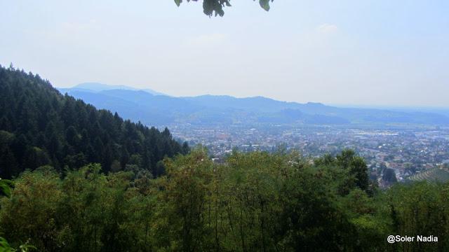 Ruines du Schauenburg - vue sur Oberkirch