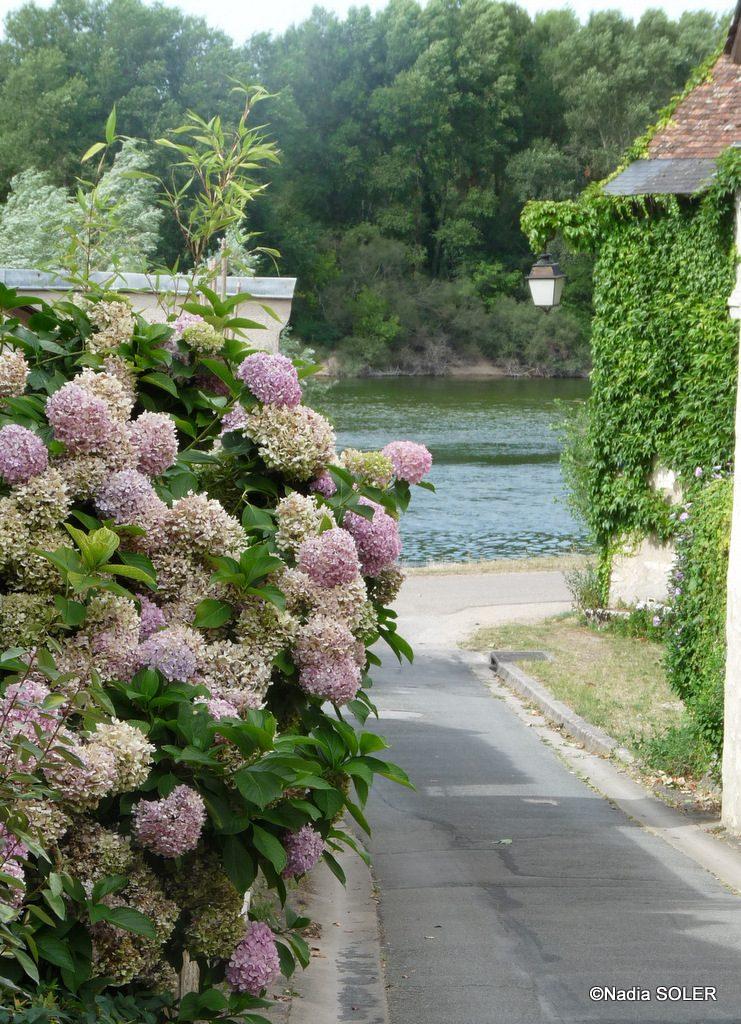 Saint-Dye-sur-Loire - la Loire depuis la Rue Creuse