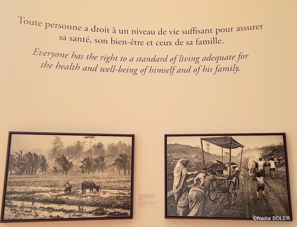 Salgado - Musée de l'Homme