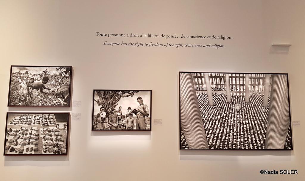 Salgado, Musée de l'Homme